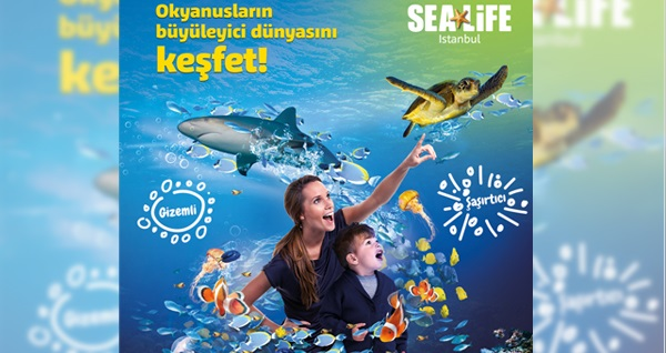 SEA LIFE İstanbul için giriş biletleri 49 TL'den başlayan fiyatlarla! Fırsatın geçerlilik tarihi için DETAYLAR bölümünü inceleyiniz.