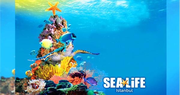 Sea Life İstanbul için giriş biletleri 29 TL'den başlayan fiyatlarla! Fırsatın geçerlilik tarihi için DETAYLAR bölümünü inceleyiniz.