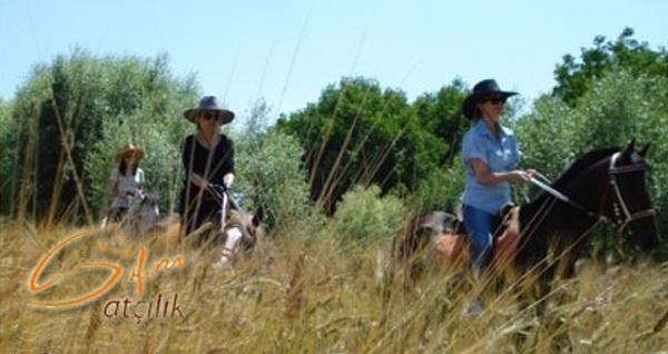 Akyurt Safari Atçılık'ta yeşillikler içinde gezerken huzur dolacağınız tek kişilik 1 saatlik at safari turu 150 TL yerine 74,90 TL! Fırsatın geçerlilik tarihi için, DETAYLAR bölümünü inceleyiniz.