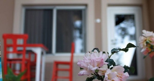Kuşadası Melis Butik Otel'de bahçe ve deniz manzaralı odalarda kahvaltı dahil çift kişilik 1 gece konaklama 250 TL'den başlayan fiyatlarla! Fırsatın geçerlilik tarihi için DETAYLAR bölümünü inceleyiniz.