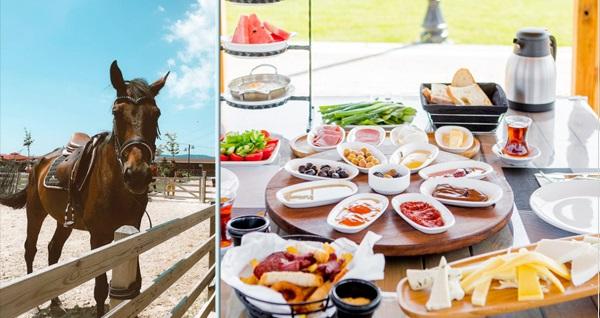 Çatalca Başarır At Çiftliği'nde doğa içerisinde serpme kahvaltı, at binme, kahvaltı tabağı ve öğle yemeği seçenekleri 45 TL'den başlayan fiyatlarla! Fırsatın geçerlilik tarihi için DETAYLAR bölümünü inceleyiniz.