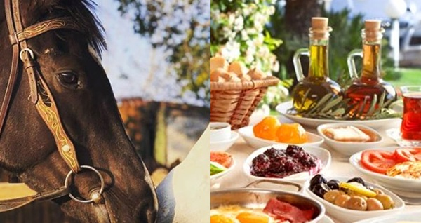 Atçılık Dünyası'nda at binme ve lezzetli kahvaltı seçenekleri! Fırsatın geçerlilik tarihi için DETAYLAR bölümünü inceleyiniz.