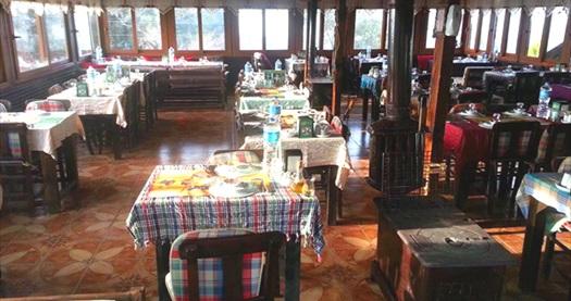 Çiçekliköy Yeni Asmalı Kahvaltı Evi'nde doğa ile iç içe serpme kahvaltı 16,90 TL'den başlayan fiyatlarla! Fırsatın geçerlilik tarihi için, DETAYLAR bölümünü inceleyiniz.