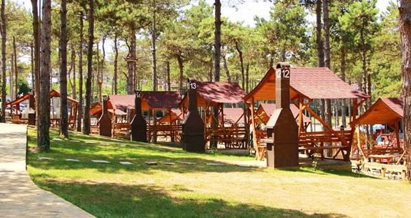 Çekmeköy Park Of İstanbul'da hayvanat bahçesi, piknik ve macera parkı için giriş biletleri 32,90 TL'den başlayan fiyatlarla! Fırsatın geçerlilik tarihi için DETAYLAR bölümünü inceleyiniz.