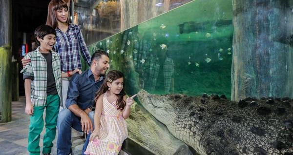 Emaar Akvaryum & Sualtı Hayvanat Bahçesi İstanbul için giriş biletleri 47,90 TL'den başlayan fiyatlarla! Fırsatın geçerlilik tarihi için DETAYLAR bölümünü inceleyiniz.