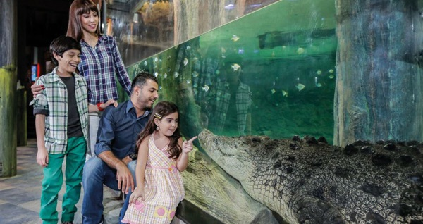 Emaar Akvaryum & Sualtı Hayvanat Bahçesi İstanbul için giriş biletleri 38,90 TL'den başlayan fiyatlarla! Fırsatın geçerlilik tarihi için DETAYLAR bölümünü inceleyiniz.