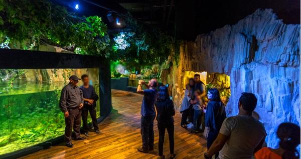 Bayram tatilinde de geçerli Emaar Akvaryum & Sualtı Hayvanat Bahçesi İstanbul için giriş biletleri 34,90 TL'den başlayan fiyatlarla! Fırsatın geçerlilik tarihi için DETAYLAR bölümünü inceleyiniz.