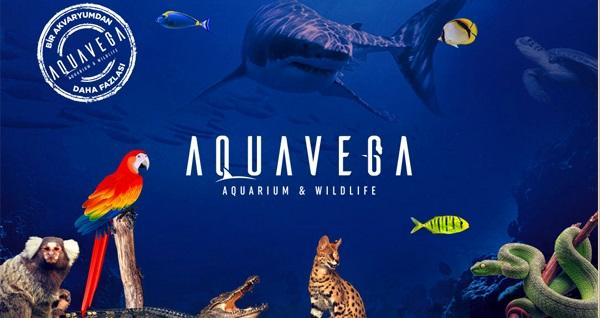 Avrupa'nın en uzun 3. tünel akvaryumu Mamak Aqua Vega Akvaryum'a giriş 20 TL'den başlayan fiyatlarla! Fırsatın geçerlilik tarihi için, DETAYLAR bölümünü inceleyiniz.