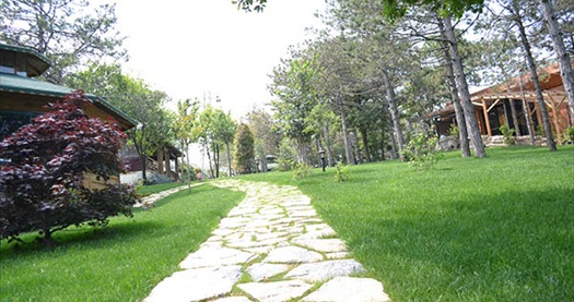 Aden Boğazköy Sosyal Tesisleri'nde doğayla iç içe serpme kahvaltı 24,90 TL! Fırsatın geçerlilik tarihi için DETAYLAR bölümünü inceleyiniz.