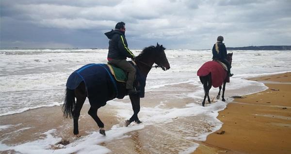 Atlıtur'dan Gümüşdere Plajı'nda kahvaltı veya gözleme seçenekli at binme turu 20 TL'den başlayan fiyatlarla! Fırsatın geçerlilik tarihi için DETAYLAR bölümünü inceleyiniz.