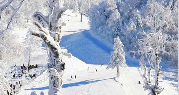 EKSTRA BEDELSİZ! X-Ride ile her gün kalkışlı günübirlik Kartepe Kayak Turu seçenekleri kişi başı 65 TL'den başlayan fiyatlarla! Fırsatın geçerlilik tarihi için DETAYLAR bölümünü inceleyiniz.