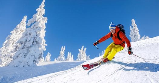 """Sevgililer Günü dahil 4* Royal Otel'de 4 gün 3 gece yarım pansiyon konaklamalı """"Bansko Kayak Turu"""" kişi başı 779 TL! Fırsatın geçerlilik tarihi için, DETAYLAR bölümünü inceleyiniz."""