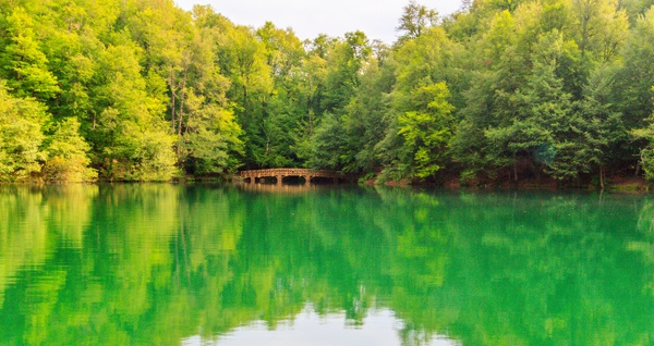 tatilco.com eşliğinde her hafta sonu Günübirlik Yedigöller Turu Fırsatın geçerlilik tarihi için, DETAYLAR bölümünü inceleyiniz.
