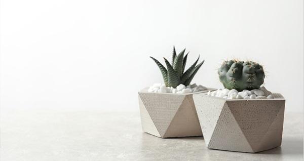 Liva Botanic'te el yapımı beton saksı ve sukulent ile özel tasarımlar 10 TL'den başlayan fiyatlarla! Fırsatın geçerlilik tarihi için DETAYLAR bölümünü inceleyiniz.