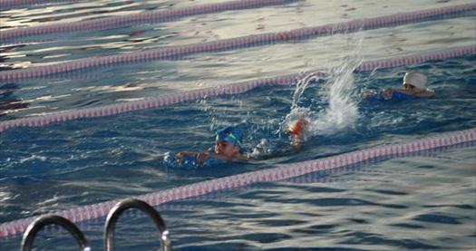 Yüzmenin tadı böyle çıkar! Avrasya Kamp'ta  5-15 yaş arası profesyonel yüzme kursu 80 TL yerine 40 TL! 30 Ekim 2014 tarihine kadar geçerlidir.