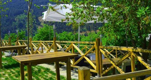Dağ Yolu İnkaya Şelale Restaurant'ta; seçeceğiniz enfes ızgara seçeneklerinden biri, salata, içecek ve tatlıdan oluşan menü 20 TL yerine 10,90 TL! 4 Temmuz 2013 tarihine kadar geçerlidir.