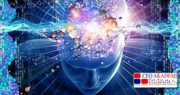 Ceo Akademi'de kişiye özel analizler ve anadolu nümerolojisi eğitimleri