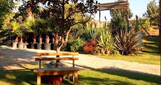 Yeşillikler içinde sabah! Urla Çuha Bahçe'de tek kişilik serpme kahvaltı keyfi 19,90 TL! Fırsatın geçerlilik tarihi için, DETAYLAR bölümünü inceleyiniz.