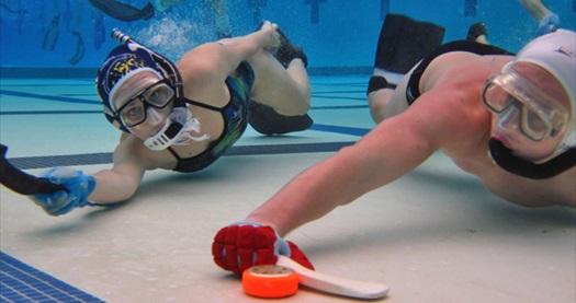 """Marmara Spor Kulübü'nden Acıbadem Doğuş Üniversitesi kapalı yüzme havuzunda """"Sualtı Hokeyi Eğitimi"""" 180 TL yerine 19,90 TL! Fırsatın geçerlilik tarihi için DETAYLAR bölümünü inceleyiniz."""